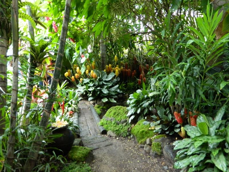 more tropical inspiration  u2026