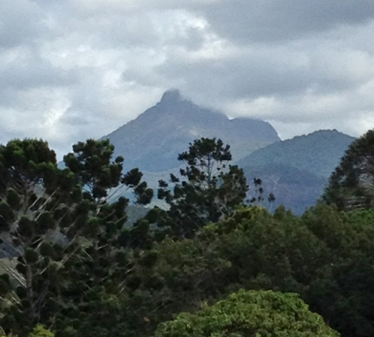 View of Mount Warning from the Café