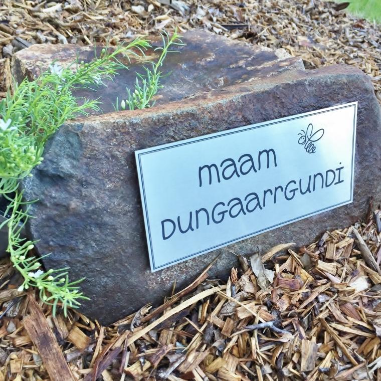 Maam dungaarrgundi - place of bees in Gumbaynggirr