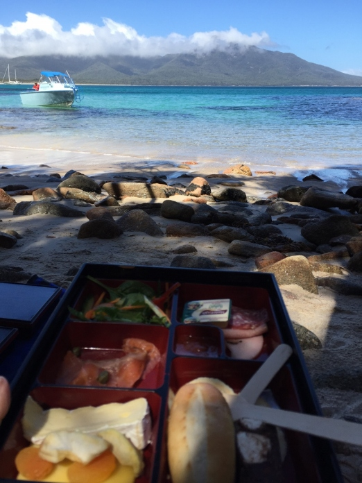 Beach Bento Box with a view