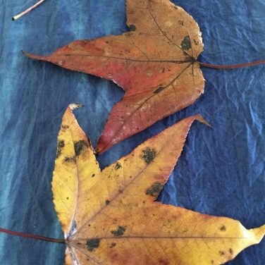 Leaves on Indigo dyed silk