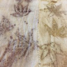 Ornamental Maple with Iron & Alum