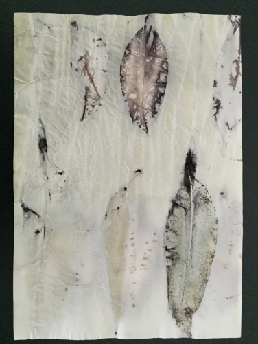 Dry Eucalypt on 80gsm 2
